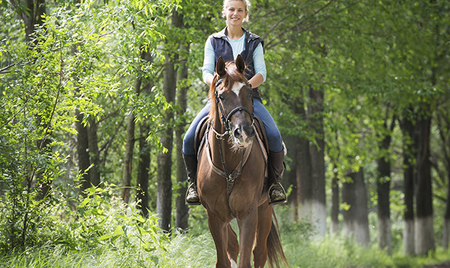Take a Horseback Ride Through The Smoky Mountains - Ramada Pigeon Forge